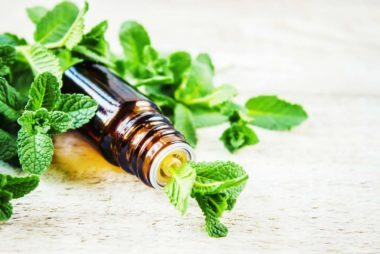 7 Essential Oils That Promote Weight Loss Reader S Digest