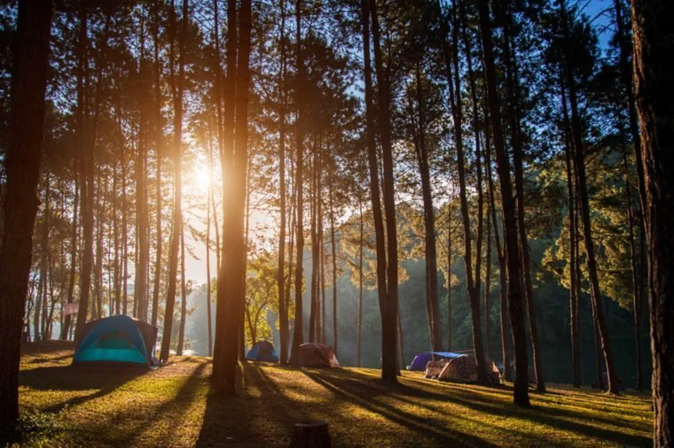 10-camping-Things Everyone Should Do at Least Once Before Summer's Over_574973200-Freebird7977