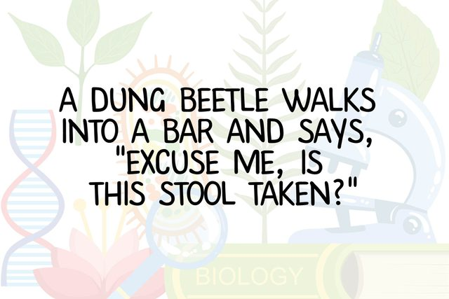 Funny-Science-Jokes-According-to-Someone-Who-Once-Got-a-B-Minus-in-Biology
