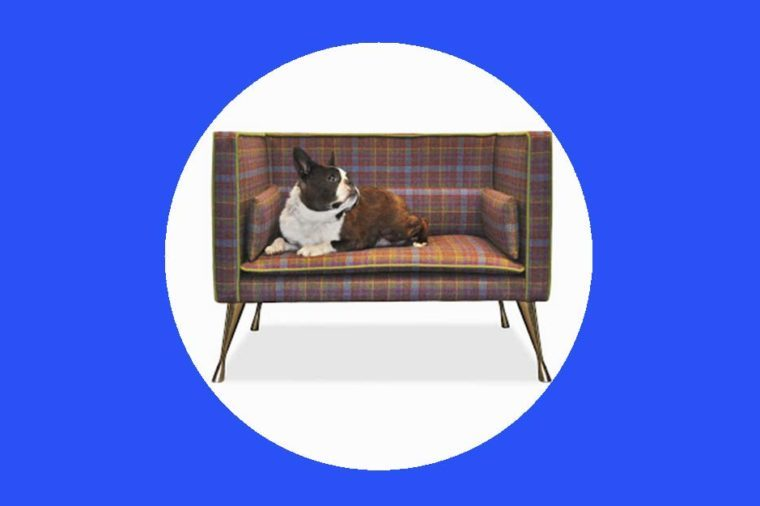 13-dog-beds-Cheeky-Gifts-For-Fans-of-the-British-Royal-Family-Regency-Regalia-via-blog.savoirbeds.co.uk