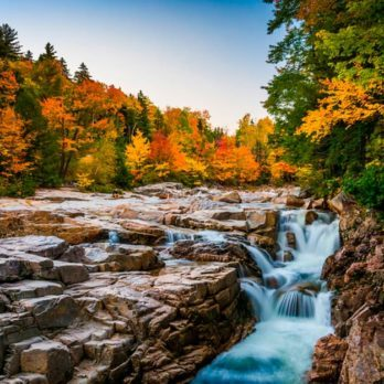 11 Road Trips That Showcase Stunning Fall Foliage You Need to Take This Autumn