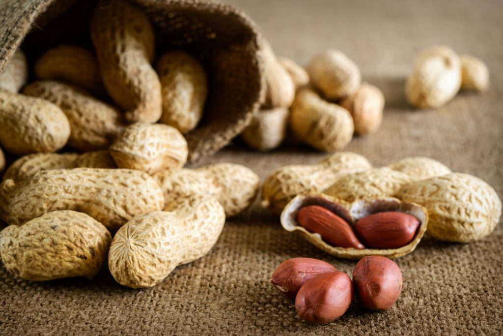 Doctors-Could-Soon-Reverse-Peanut-Allergies-in-Children,-Thanks-to-New-Research_189603059_MaKo-studio