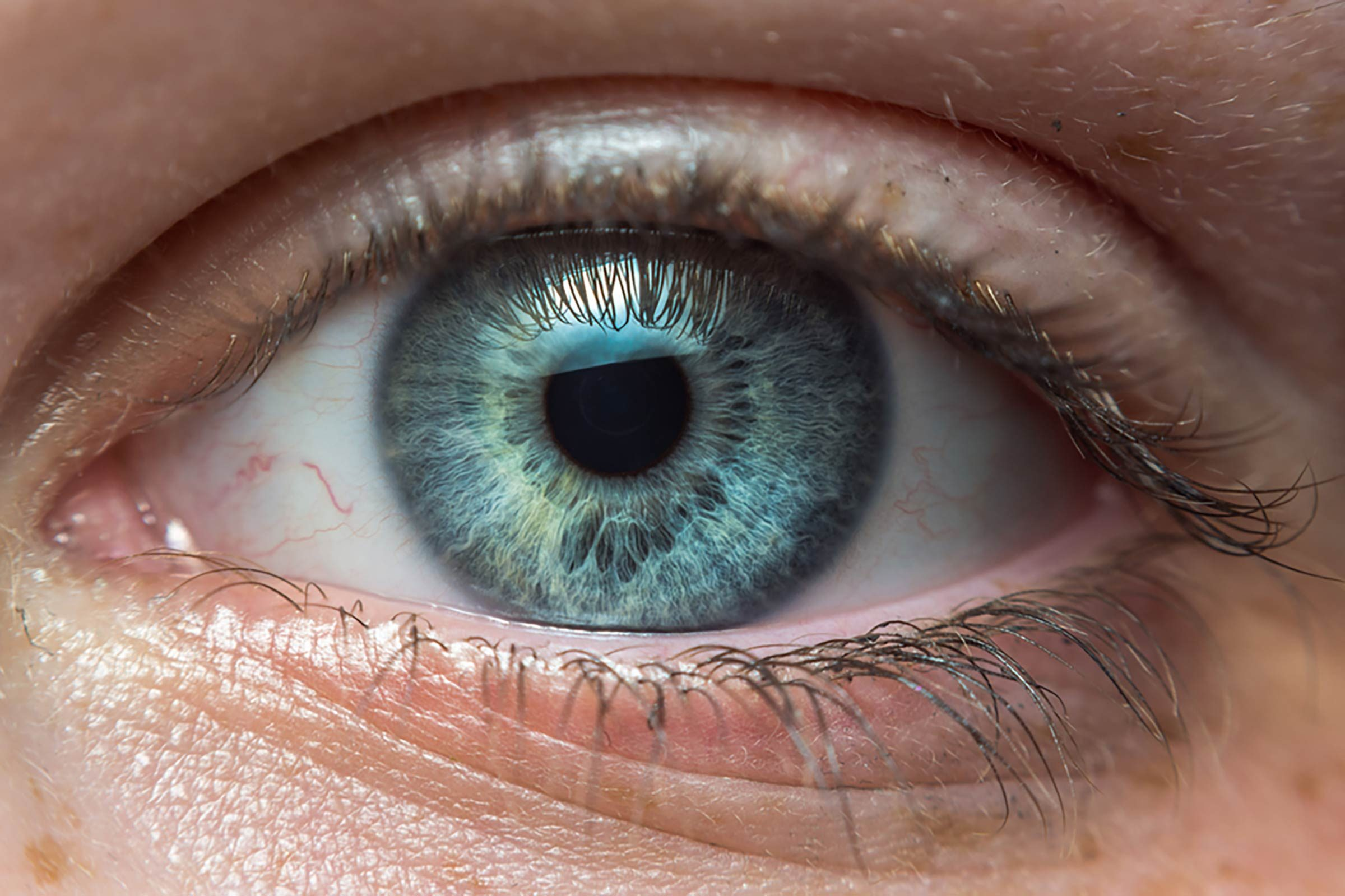 Early Autism Diagnosis Key To Effective >> This Simple Eye Test Could Be The Key To Catching Autism Early