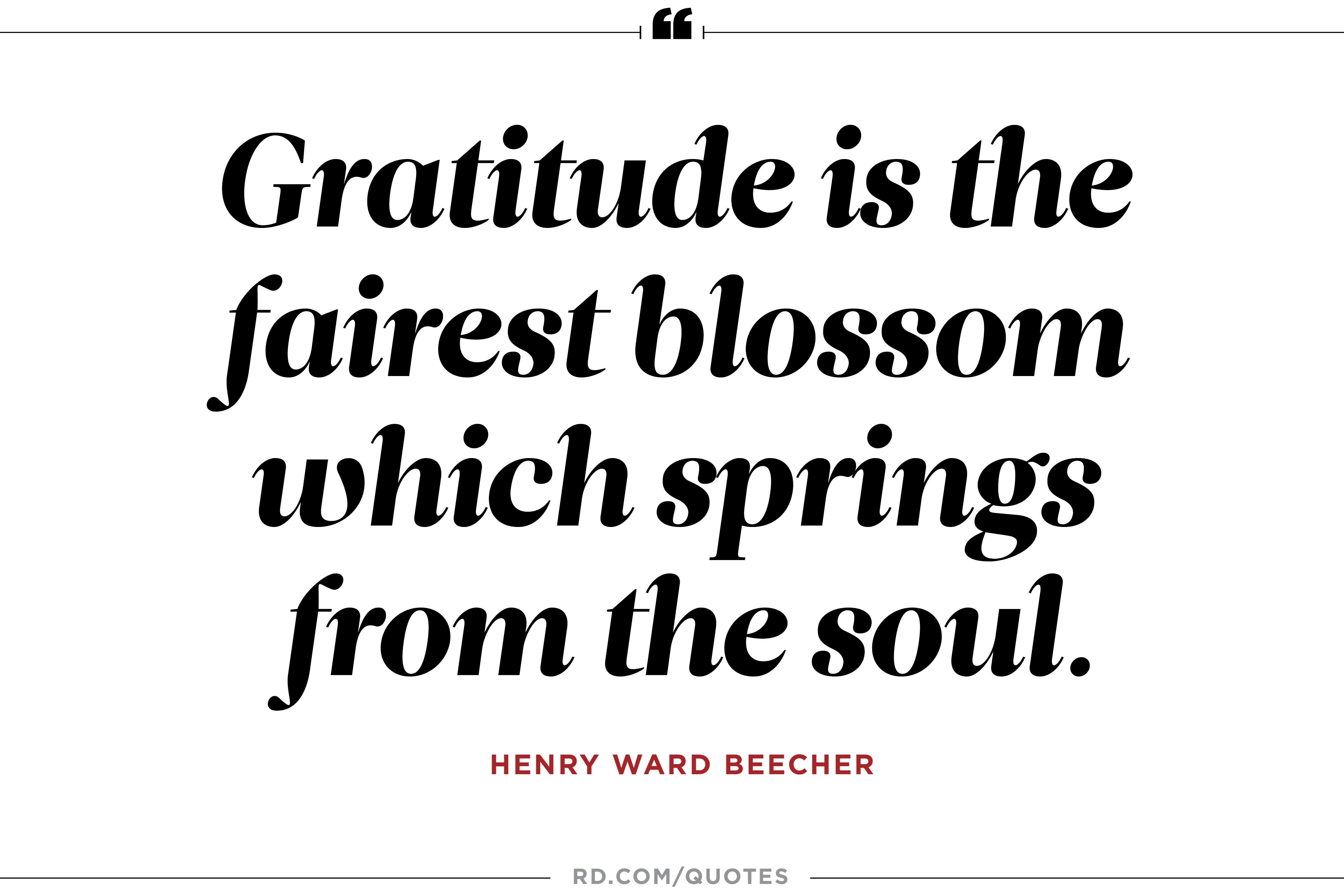 Warm and Fuzzy Quotes to Inspire Gratitude7