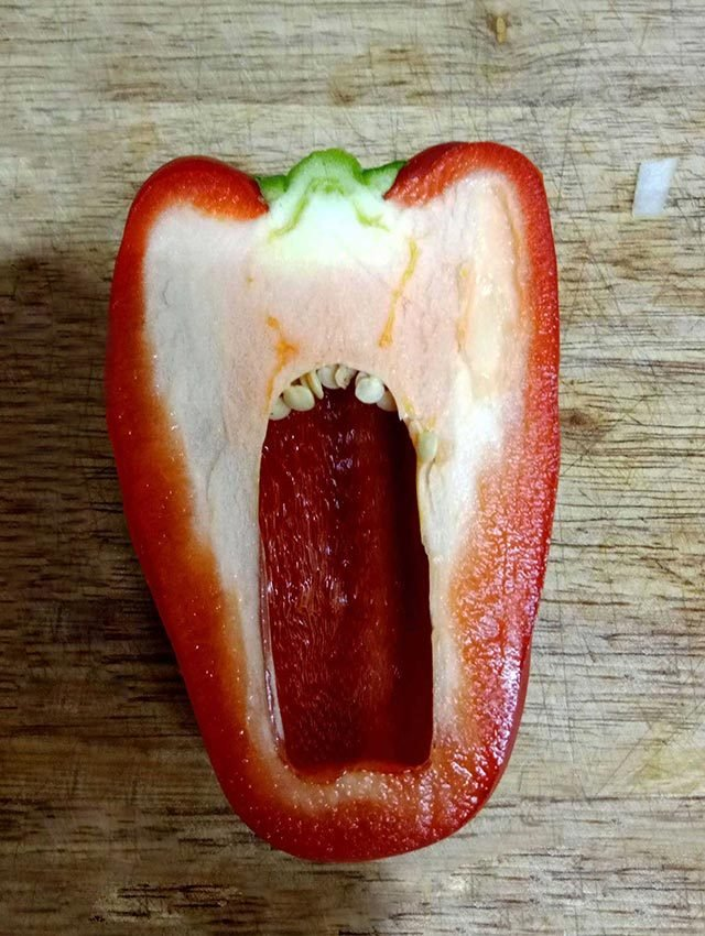 01-red-pepper-Do-You-Always-See-Faces-in-Everyday-Objects-courtesy-Lenstore