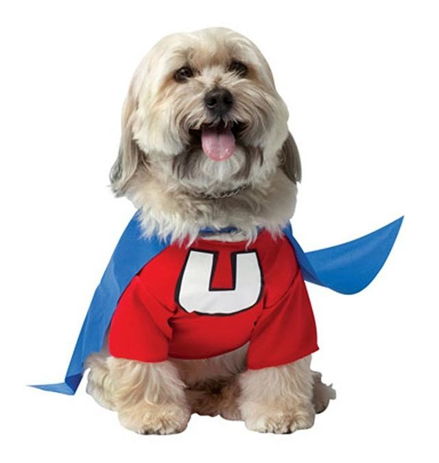 Dog Halloween Costumes Best Halloween Costumes for Dogs | Readeru0027s Digest  sc 1 st  Readeru0027s Digest : spirit halloween pet costumes  - Germanpascual.Com