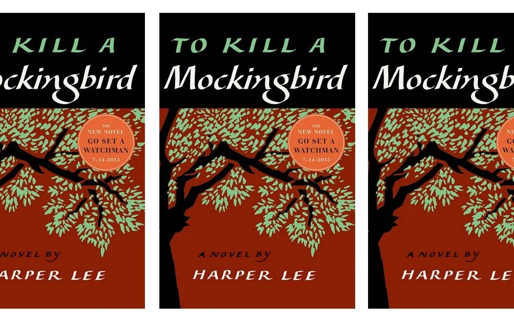 an analysis of social inequalities in to kill a mockingbird a novel by harper lee To kill a mockingbird questions and answers chapter 5 8 what social mistake does tom reading quiz on chapters 1-5 in to kill a mockingbird by harper lee.