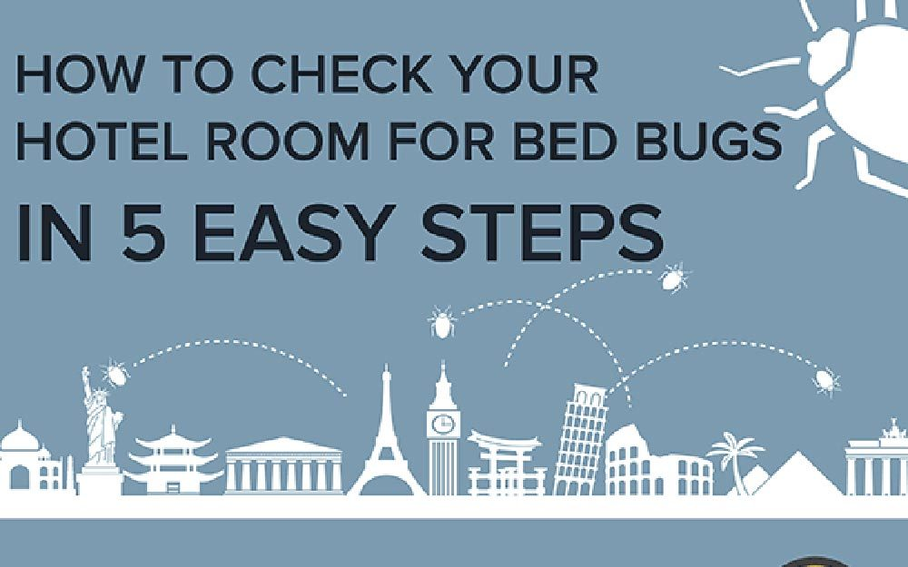 How To Test For Bed Bugs This Is How To Spot Bed Bugs In Your Hotel Room According