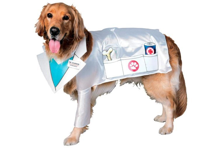 dog costume doctor dogtor