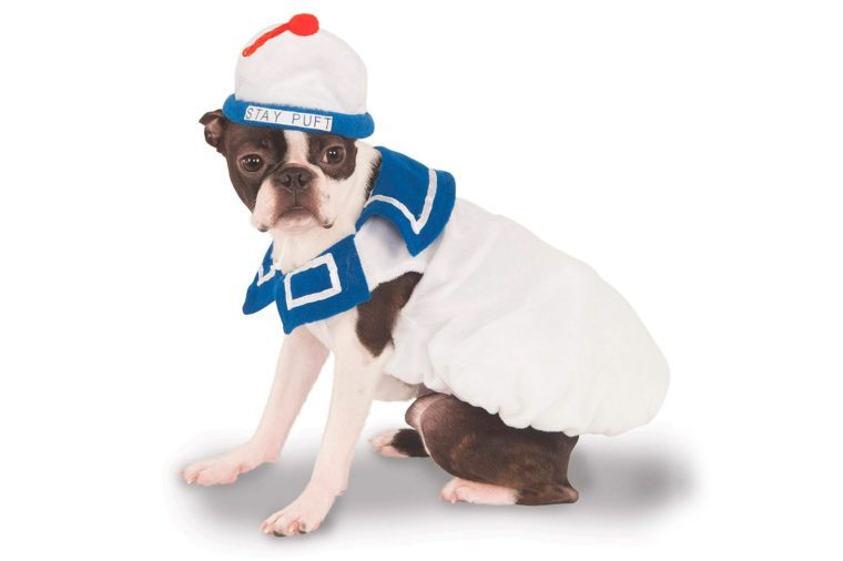 ghost buster ghostbuster dog costume