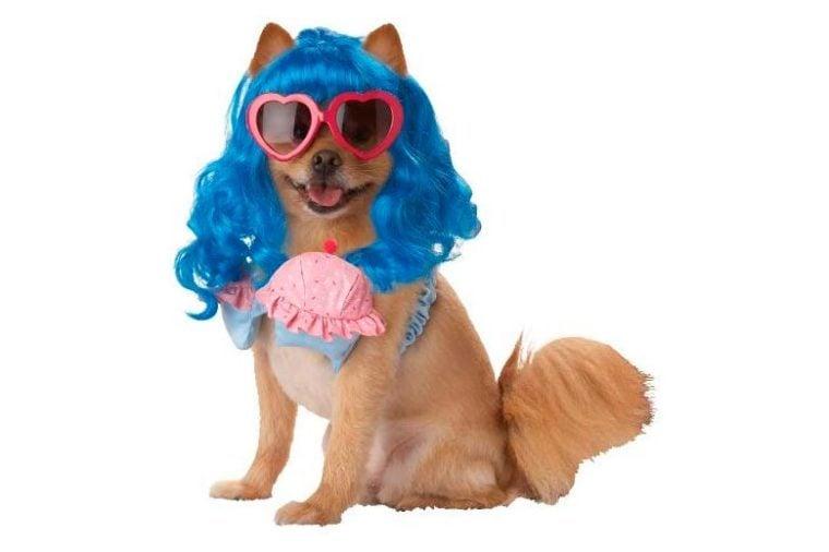 pup-a-razzi dog costume cupcakes blue wig