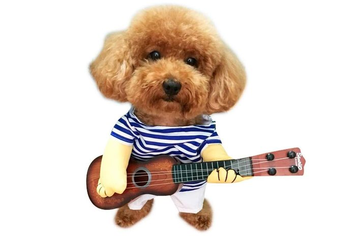 dog costume rocker guitar ukelele