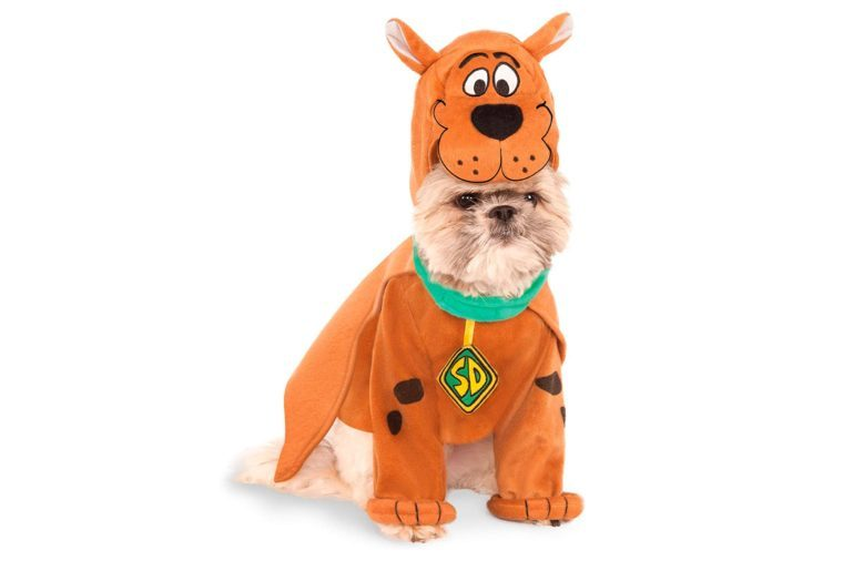 dog costume scooby do