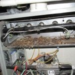 12 of the Craziest Things Ever Found During Home Inspections