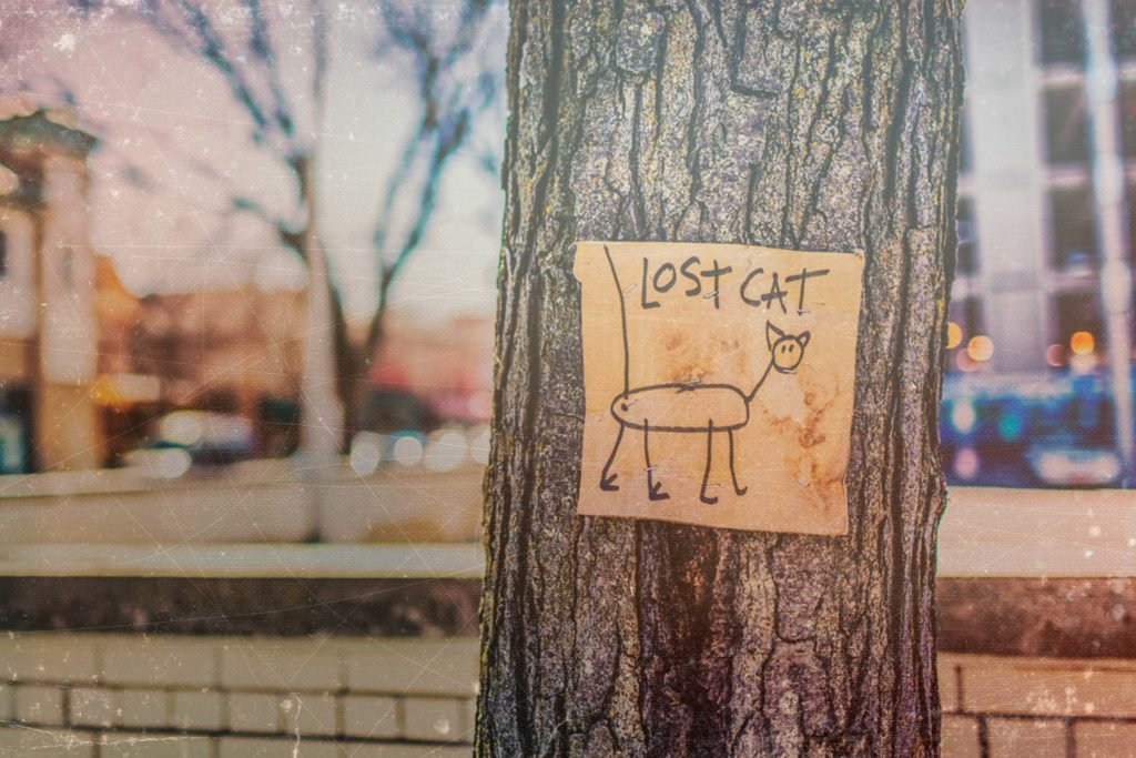 lost-pet-sign