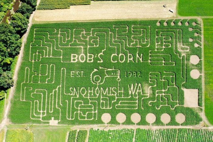 Bob's Corn and Pumpkin Farm, Snohomish, Washington