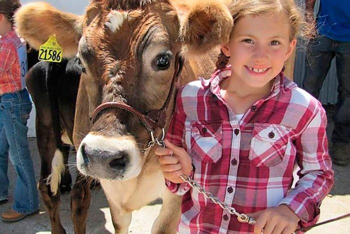 young girl holds the lead of a brown cow and poses close to the cows head