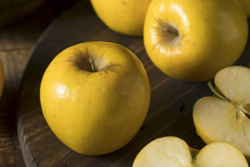 These-Apples-Will-Never-Turn-Brown-No-Weird-GMOs-or-Lemon-Juice-Required-554807116-Brent-Hofacker