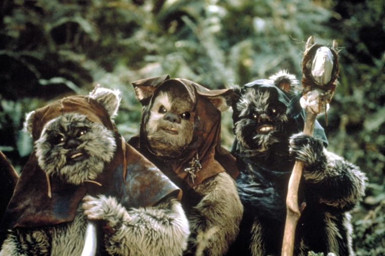 ewoks_star wars facts