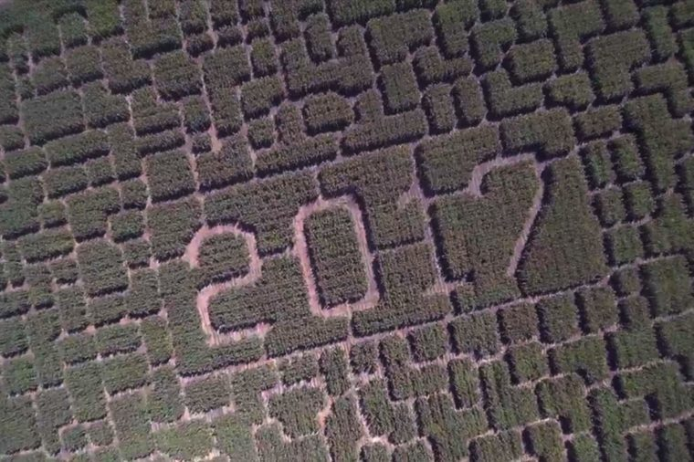 08-tk-most-insane-corn-mazes-in-america-courtesy-Robert-Eliason