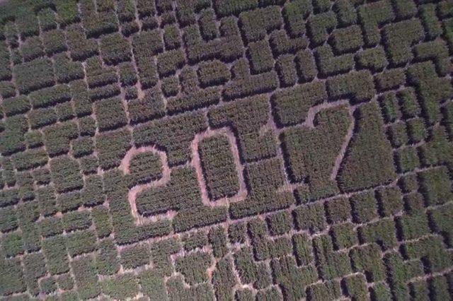 08-tk-most-insane-corn-mazes-in-america-courtesy-Robert-Eliason