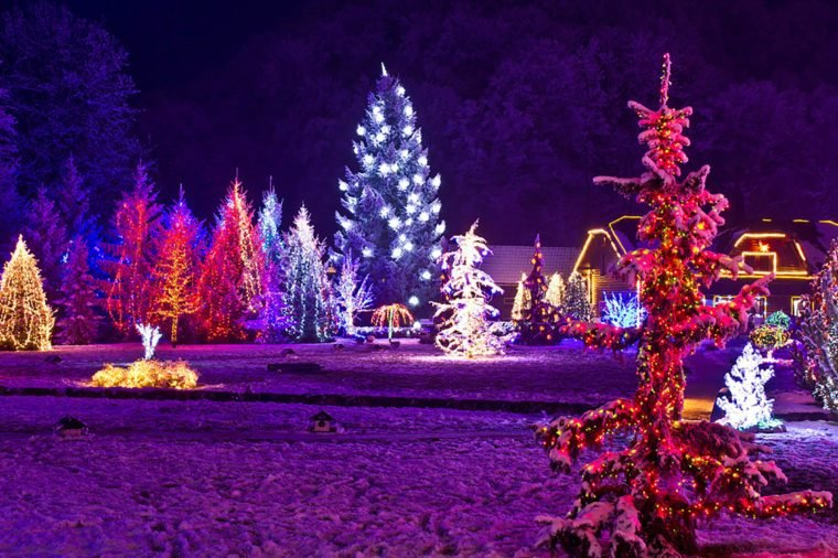 b3bed92e39b0 Holiday Lighting Tips for a Cheap but Eye-Catching Display ...