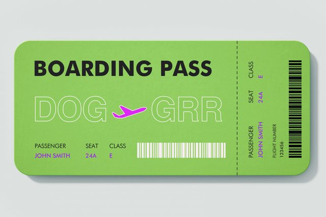 boarding pass. DOG to GRR.