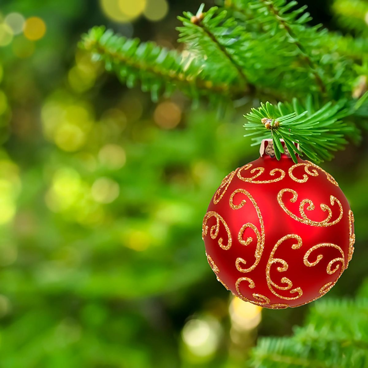 why christmas colors are green and red readers digest - When Does Christmas End