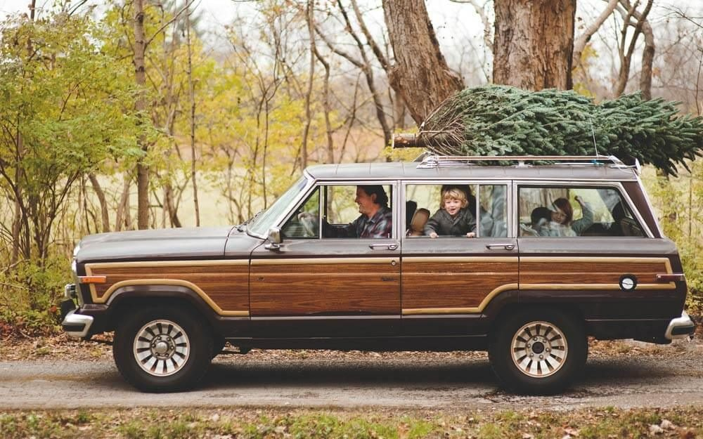 how driving with a christmas tree affects gas mileage readers digest - Christmas Decorations For Your Car
