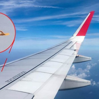This Is What Those Little Hooks on Airplane Wings Are Really For