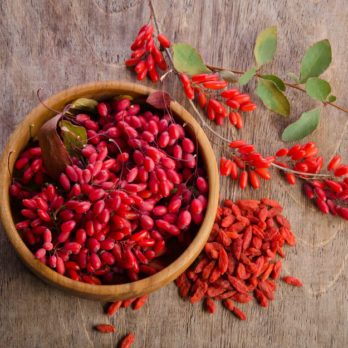 8 Amazing Benefits of Goji Berries You Didn't Know About
