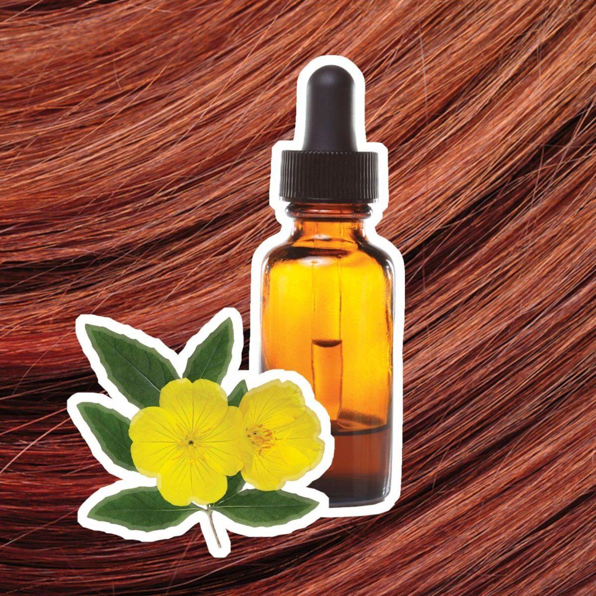 9 amazing benefits of evening primrose oil readers digest mightylinksfo