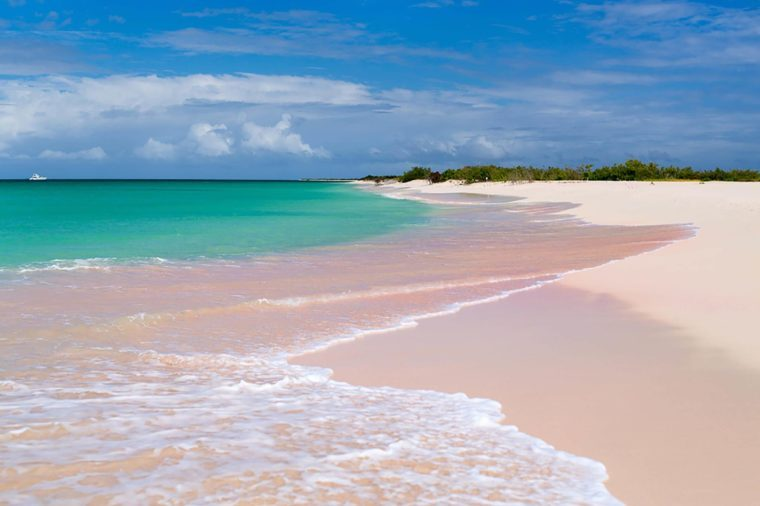 Pink Sand Beach BlueOrange Studio Shutterstock