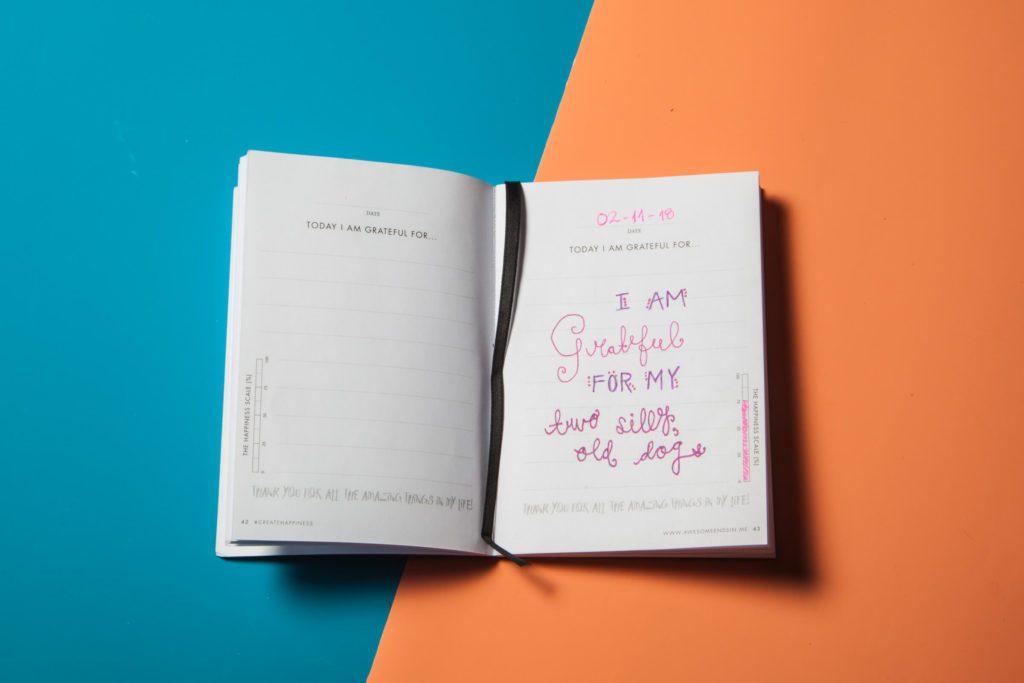 8 gratitude journal