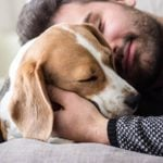 This Is How Dogs Get Humans to Fall in Love With Them, According to Science