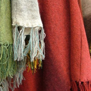 This Is Why You Might See Scarves Hanging on Trees This Winter