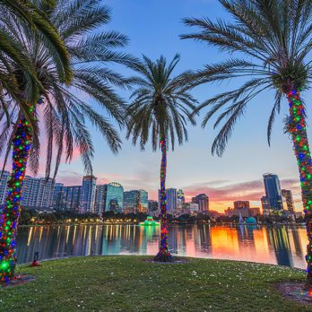 How to Celebrate a Winter Holiday, According to a Florida Transplant