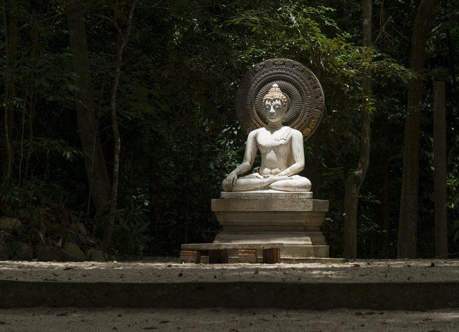 Buddha image at Wat Suan Mokkh, Surat Thani, Thailand.