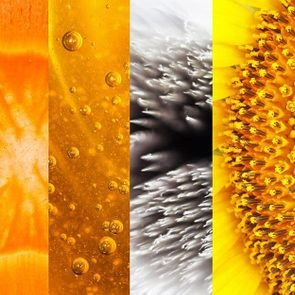 Can-You-Identify-Everyday-Objects-By-These-Close-Up-Pictures