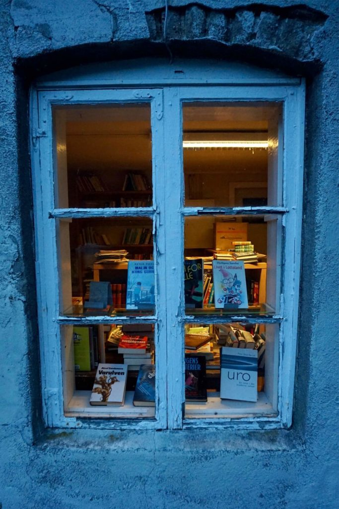 03-window-this-small-norwegian-town-turns-abandoned-buildings-into-bookstores-courtesty-andrea-finazzi-instagram-andrefinaz