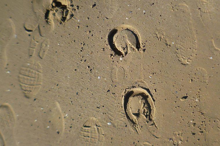 Horse-Footprints
