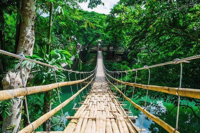 Bamboo-bridge