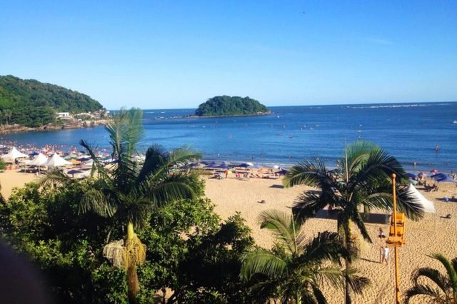 MAtinhos-brazil