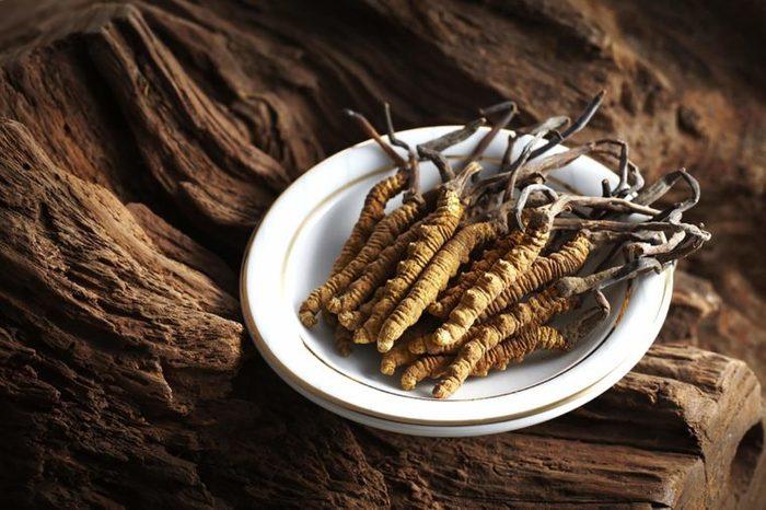 Caterpillar-fungus