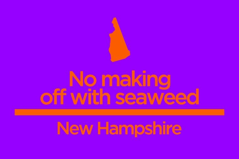 New Hampshire No Making Off With Seaweed Things You Wont Believe Are In The