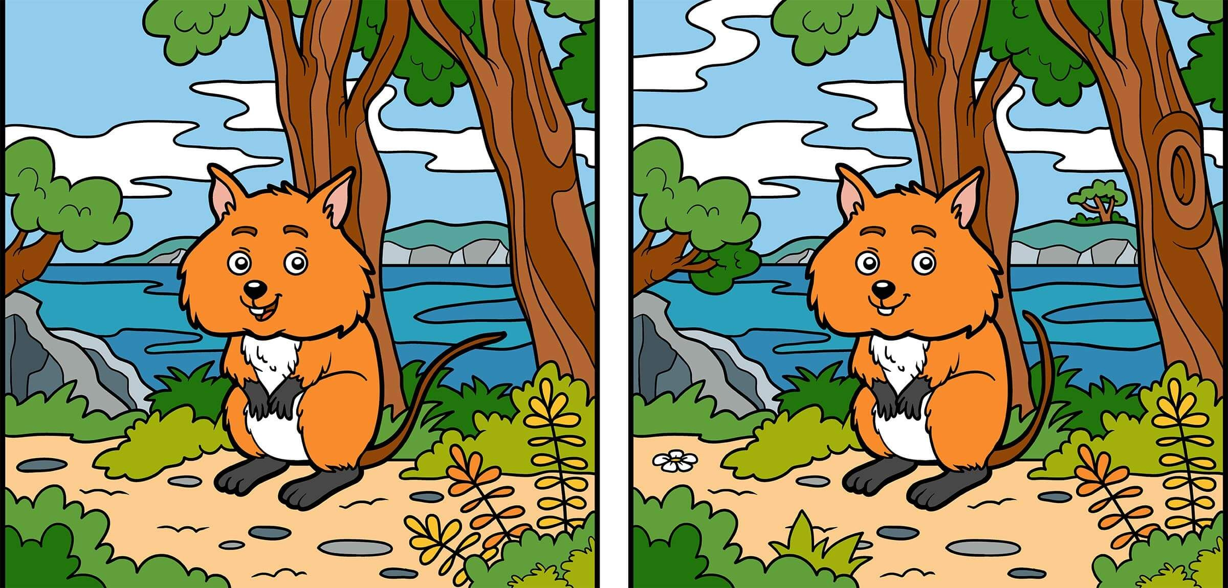 Can You Spot The 10 Differences In This Picture Reader S Digest