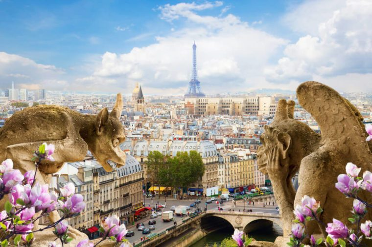 Gargoyle on Notre Dame Cathedral and city of Paris with spring flowers, France