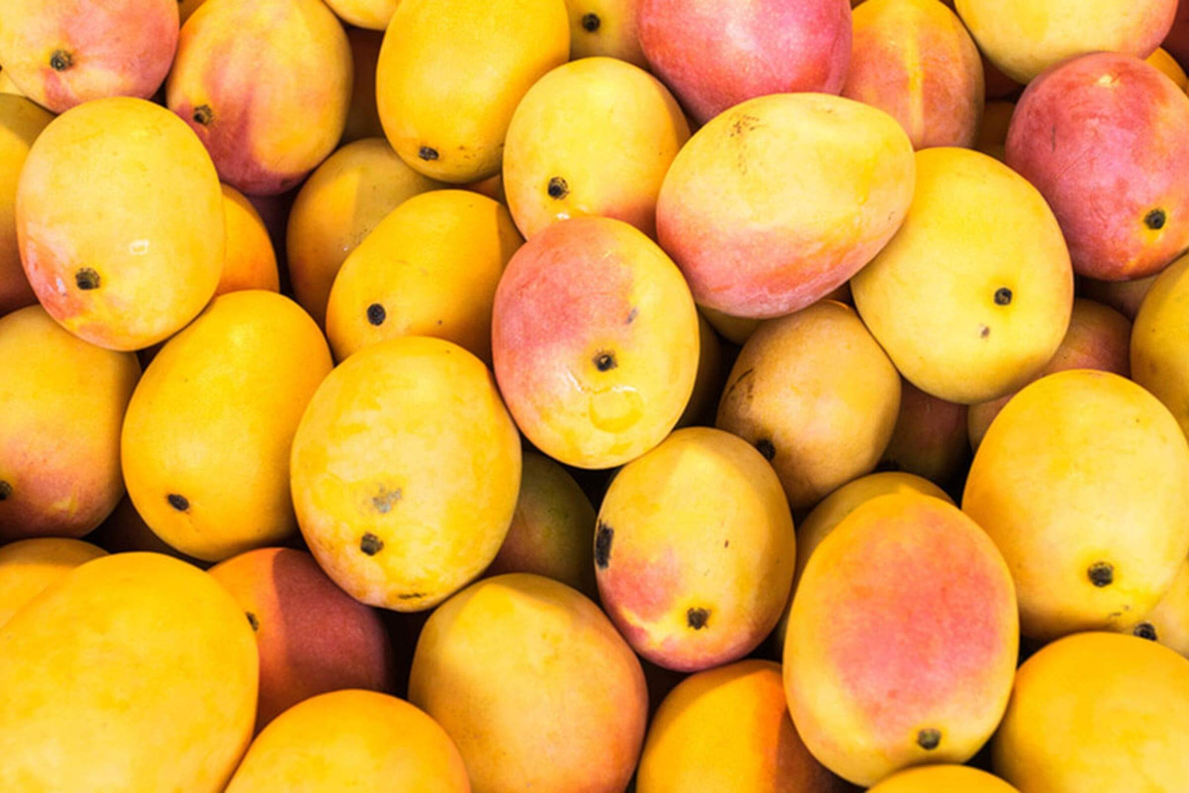 The Weird Reason That Mango Makes Your Mouth Itch | Reader's Digest