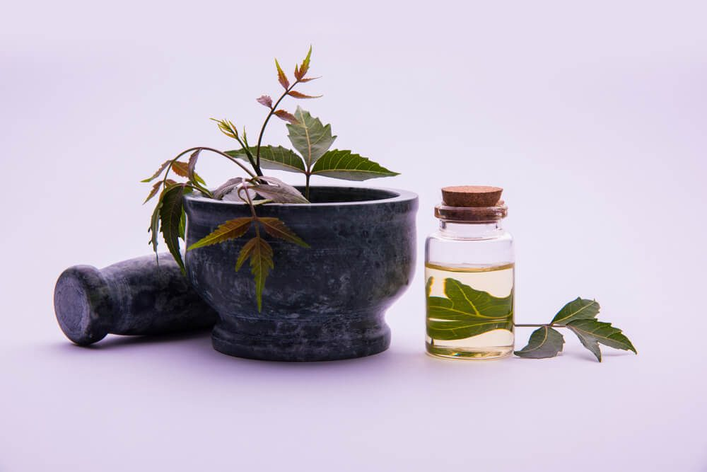 ayurvedic medicine not just a Understanding ayurvedic medical practice and professional standards i love this whole concept of medicine i just wish there would be medical insurance benefits.