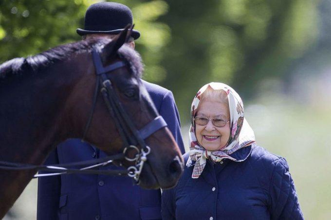 queen-elizabeth-has-won-more-than-9-million-on-this-sport-EDITORIAL-8818212n-Rupert-Hartley-REX-Shutterstock